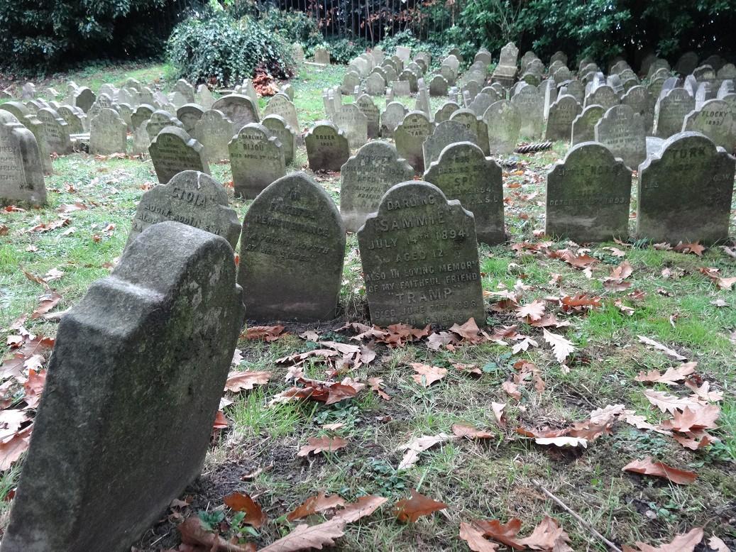 Der historische tierfriedhof in london schemenkabinett - Eigenschaften der fabeltiere ...